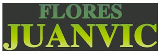 Los mejores ramos de flores de Cáceres